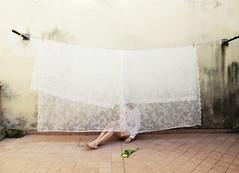 le tende (LaSandra.) Tags: sandralazzarini selfportrait pannistesi undercover faceless girl legs home me flowe tulip