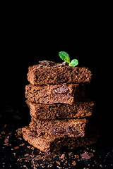 Chocolate brownies (Arx0nt.) Tags: brownie cake chocolate cookie dessert food brown blackbackground cocoa darkchocolate snack square sweet unhealthy almond background bake bakery bitter cafe chewy closeup cooked cooking crumbs cuisine dark delicious diet eat fat fresh goods group homemade horizontal meal mint nut served stack sugar tasty vertical macrodesserts