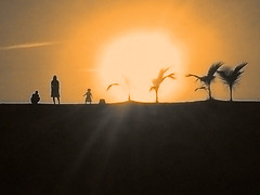 We a family (ix 2017) Tags: israfel67 méxico jalisco puertovallarta vallarta playa beach costa shore sunset atardecer sol sun siluetas familia family contraluz backlight ocaso naranja orange cálido warm duotone duotono editada edited ps palmeras palms mujer woman hombre man niña girl