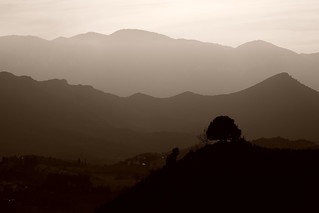 Les ombres du pays Cathares