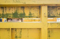 Secret Eyes (藍川芥 aikawake) Tags: serious secret eyes kid child girl littlegirl littlechild yellow color cute ricohgr enjoy life