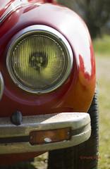 VW 1303, 1 (F.Valdt) Tags: vw veteranare sweden sverige beatle bubbla 1975 car bil