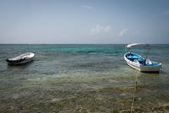 Tulum Casa Cenote blue-3