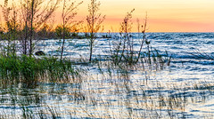 _DSC7124.jpg (David Hamments) Tags: portelgin summer2016 ontario macgregor point provincial park sunset panorama ngc flickrunitedaward macgregorpointprovincialpark
