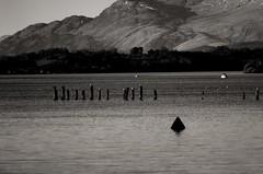 K5IM5758_v1 (ian.robertson.63) Tags: water scotland lochlomond