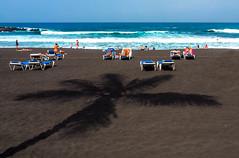 Playa Jardin - under the palm tree (claudia.kiel) Tags: teneriffa tenerife kanarischeinseln canaryislands spanien spain puertodelacruz atlantik atlanticocean strand beach playajardin schatten shadow