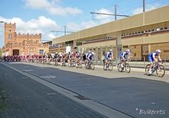 Aalst (BE) - Ronde van Vlaanderen 2017 (Bvaerrts) Tags: aalst oilsjt alost be belgium belgië belgique belgie flanders vlaanderen station stationsomgeving 2017 ronde rondevanvlaanderen rvv tour tourofflanders cycling