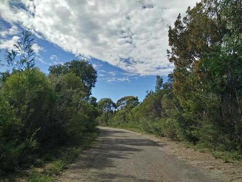 Victoria Management Trail