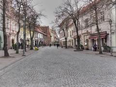 pilies Gatve, Vilnius (eliobuscemi) Tags: lituania street strada colors