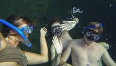 Tulum Casa Cenote friends