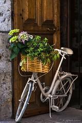 El cesto de flores (allabar8769) Tags: bicicleta candelario portal salamanca