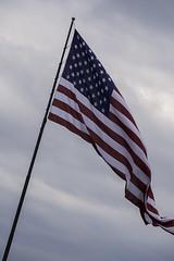 DSCF2600 lflag (snolic...linda) Tags: arkansas 501 fujixt2 flag