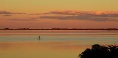 The Paddleboarder (RWGrennan) Tags: ninigret pond saltpond salt sunset paddle paddleboard clouds sky color reflection charlestown ri rhodeisland new england water cloud peace calm silhouette travel rwgrennan rgrennan ryan grennan nikon d610