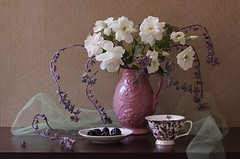 April Contrasts (Esther Spektor - Thanks for 12+millions views..) Tags: stilllife naturemorte bodegon naturezamorta stilleben naturamorta composition creativephotography artisticphoto arrangement art april spring contrast tabletop bouquet flowers rose food berry pitcher branch cup plate tulle ceramics pattern availablelight white green pink purple lavender brown black estherspektor canon blackberry