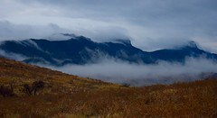 Morning mist (LEALSWEE) Tags: morning clouds mountains mist australia wilpenapound flindersranges