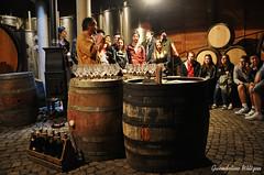 Wine tasting (Gwendoline Wiltgen) Tags: people france nikon wine alsace katzenthal nikond90 nikkor18105mm