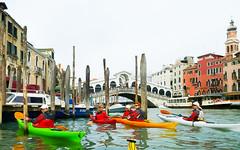 Venetsia_melonta-28.jpg