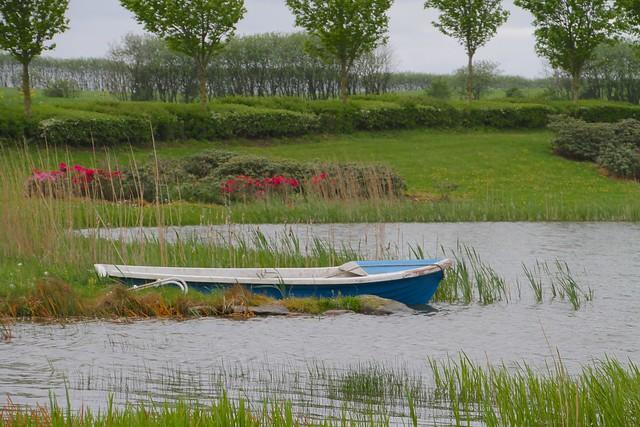 Lille sø med robåd