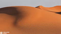 Saudi Arabia - Shadow And Light Of The Arabian Desert (Sarah Al-Sayegh Photography | www.salsayegh.com) Tags: desert saudiarabia ksa الصحراء landscapephotography السعودية كانون leefilters الرمال canoneos5dmarkiii canon5dmark3 wwwsalsayeghcom sarahhalsayeghphotography infosalsayeghcom