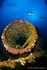agujero negro (III) (Jaime Franch) Tags: diving formentera buceo baleares laplataforma tokinaatx107dxfisheyeaf1017mmf3545 mediterráneo visemanafotografíasubmarinaformentera