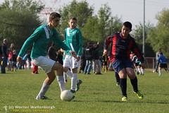 VDP Cad B - Nieuw Boechout (5-0) [15] (VDP Sport fotograaf) Tags: football futbol futebol voetbal fussbal youthsoccer vdpsport jeugdvoetbal