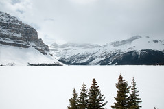 Bow Lake (.niels) Tags: canada alberta banffnationalpark ca14 improvementdistrictno9
