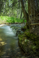 From Our First Camping Trip of the Year (SimplyAmy74) Tags: longexposure camping trees mountains home beauty waterfall moss gorgeous sony pacificnorthwest streams enchanted theresnoplacelikehome northidaho milkywater idahostate iloveidaho sonya7