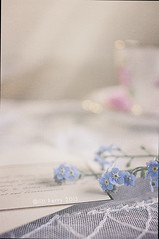 Remembering (borealnz) Tags: pink flower cup memorial pretty lace card forgetmenot cloth delicate trev