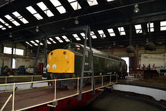 D213 Andania on the turntable at Barrow Hill, 1st June 2014. (Dave Wragg) Tags: diesel railway loco locomotive preserved roundhouse britishrailways barrowhill class40 40013 d213 andania