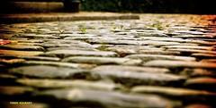 Georgian Street in Liverpool (Terry Kearney) Tags: blur texture architecture liverpool buildings gothic depthoffield birkenhead baroque albertdock wirral grade1 merseyside rivermersey ellesmereport georgianliverpool