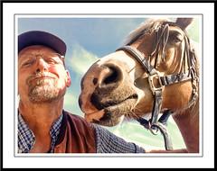 Pret voor twee (gill4kleuren - 11 ml views) Tags: life horse me sarah fun outside happy running gill saar paard haflinger