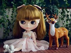 Blythe Doll Le Jardin De Maman