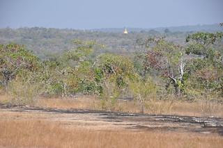 Pha Taem National Park
