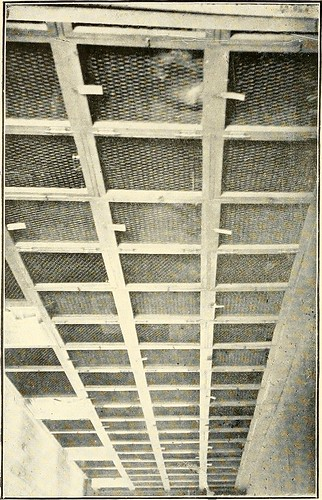 Image from page 51 of