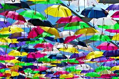 umbrella canopy (* Patrcia *) Tags: street travel pink blue roof sky streetart color green art portugal yellow umbrella colorful lilac installation canopy artinstallation parapluie 2014 agueda umbrellaroof agitagueda umbrellacanopy