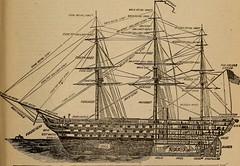 Anglų lietuvių žodynas. Žodis seamanlike reiškia jūrininkas lietuviškai.