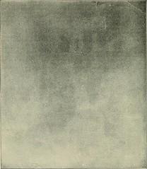 Anglų lietuvių žodynas. Žodis concrete representation reiškia betono atstovavimas lietuviškai.