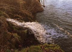 Plan d'eau 18/02/2017 ( +17°) (Nadine Roche) Tags: eau hiver printemps gel cantal mauriac