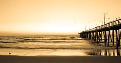 Virginia Beach (davebentleyphotography) Tags: 2015 canon virginiabeach beach jdavidphotos ocean sunrise virginia davebentleyphotography pier waves sand morning