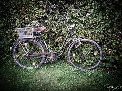 Oberbayern mit dem Motorrad - Chiemsee und Umgebung (dieter_weinelt) Tags: dieter fiona melanie sommer2016 tunnel victoria womo wohnmobil campervan mobilehome summer2016