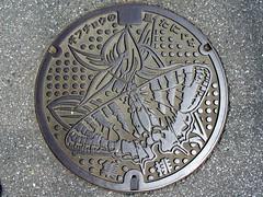 Tanigumi Gifu, manhole cover (岐阜県谷汲村のマンホール) (MRSY) Tags: tanigumi gifu japan manhole lily flower 蝶 ユリ