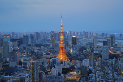 Tokyo Tower and urban city skyline at dusk sunset blue hour, view from high level building (MEzairi) Tags: architecture asia asian attraction black blue building business city cityscape construction dark destination dusk evening famous fuji high japan japanese landmark landscape lattice light metropolis modern night observation sky skyline skyscraper steel street sunset tokyo tourism tourist tower travel twilight urban vacation view
