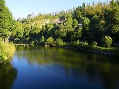 TW227218 (totogo1015) Tags: beautiful bridge green jama landscape natural nature nobody pedestrian pivka place postojna river slovenia slovenian tourism travel tree valley yellow