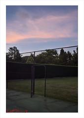 Pinky Blue Sky - Southern Highlands (Kent Johnson) Tags: 1000logoadj2seb0796 sky nature hedge garden tenniscourt southernhighlands nikon twilight sunset