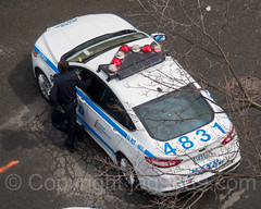 NYPD Precinct 52 Police Patrol Car, The Bronx, New York City (jag9889) Tags: 2017 20170412 al aerialview allamericacity americanleague ballpark baseball baseballteam bombers bronx car cop finest firstresponder ford lawenforcement majorleaguebaseball ny nyyankees nyc nypd nyy newyankeestadium newyork newyorkcity newyorkcitypolicedepartment newyorkyankees officer outdoor pinstripes police policedepartment policeofficer policepatrolcar southbronx stadium thebronx thebronxbombers theyanks usa unitedstates unitedstatesofamerica vehicle yankeestadium yankeestadiumiii yankees jag9889 p052