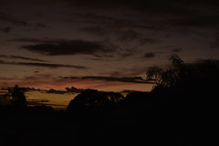 At the going down of the sun (Images by Jeff - from the sea) Tags: nikon d7200 sunset dusk twilight clouds palmtrees tamronsp2470mmf28divcusd bluesky bundaberg australia april 2017
