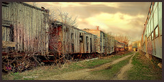 Splintered Tracks of The Past (jackalope22) Tags: train wooden boxcar boone railroad old graveyard rustic