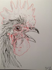 A rooster a day, day 18 (anviss) Tags: rooster drawing sketch illustration illustratie schets tekening haan uniball stabilo ink red rood black zwart