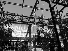 rv93a (daily observer) Tags: graffiti philadelphiagraffiti abandonedphiladelphia philadelphia readingviaduct
