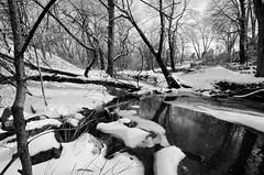 OMFD Snow & Ice Storm 2912 (dweible1109) Tags: omfd outmyfrontdoor snowscape frozencreek winter landscape scenic nikon d5100 1024mmnikkor penna